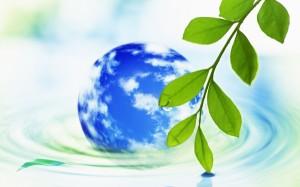 екологыя фото